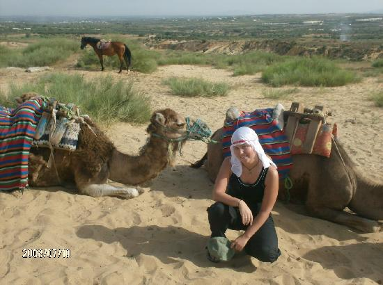 Le Khalife: slow,  tired camels and of course me
