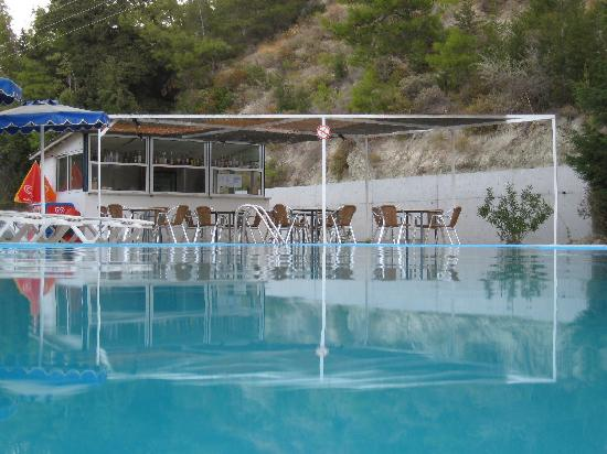Pine Trees Art Hotel: The Pool Bar in the morning