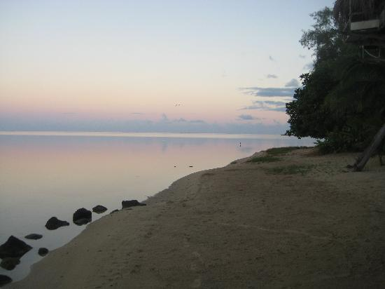 Pension Tarariki : View from the Beach at Tarariki