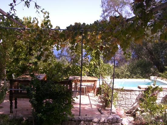 Zakspitaki B&B: 'A shower with a view'