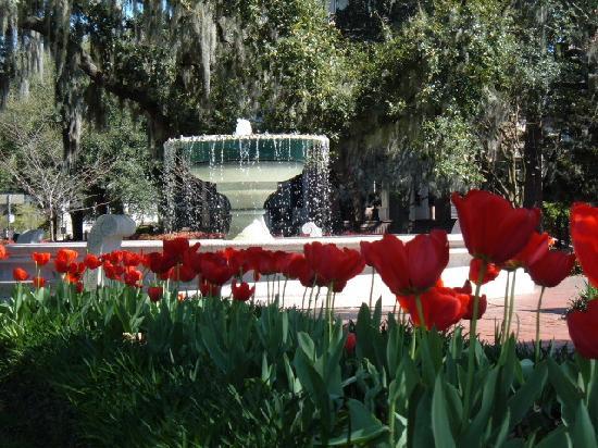 Explore Savannah: Oglethorpe square