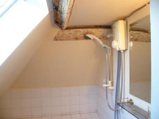 Gissing Hall Hotel: Showerhead(banger)