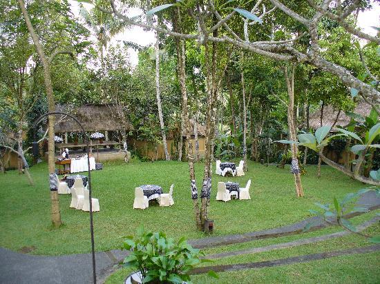 Komaneka at Tanggayuda: Le jardin