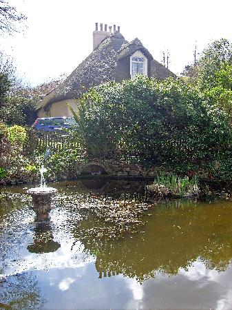 Sheldon, UK: Little cottage with Carp and Parhanas in the water