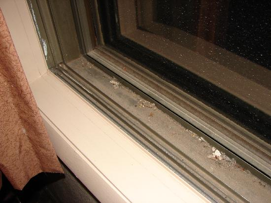 Travelodge Colorado Springs: Window sill