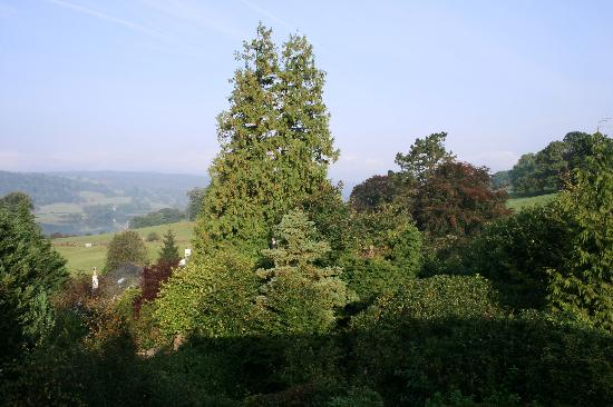 Beechmount Country House: another view from bedroom
