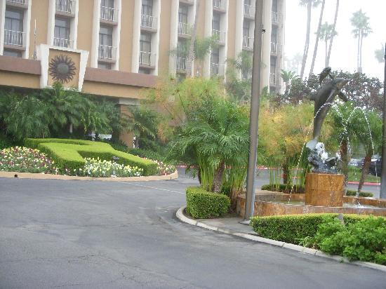 Bilde fra Carlton Hotel Newport Beach