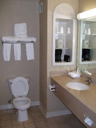 Holiday Inn Express Hotel & Suites London: Nice large bathroom with plenty of room to move around in