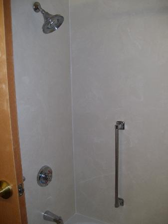 Holiday Inn Express Hotel & Suites London: Shower with handle, great for seniors!