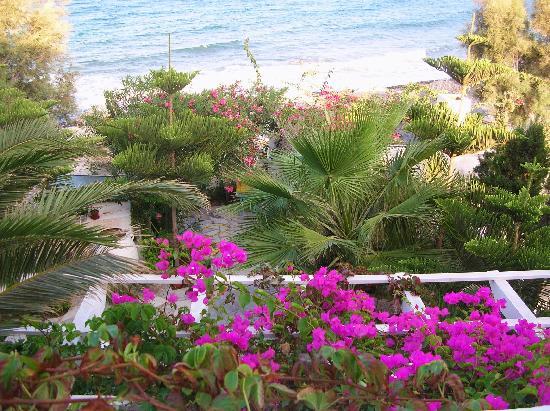 Thalassa Sea Side Resort & Suites: vue depuis le balcon