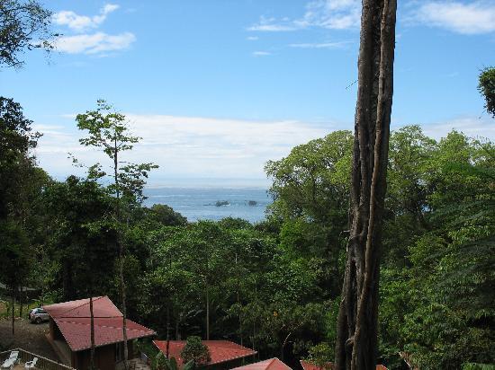 Mar y Selva Ecolodge : vue sur l'Océan Pacifique