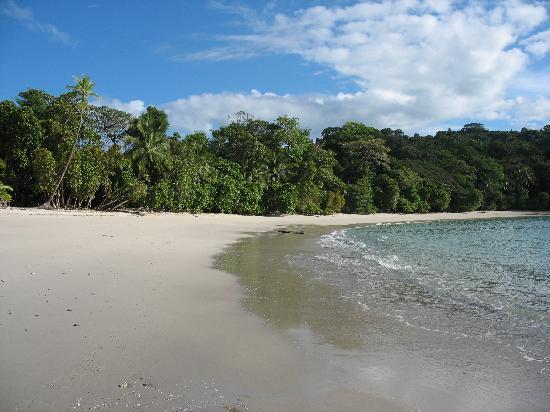 Mar y Selva Ecolodge: le paradis !