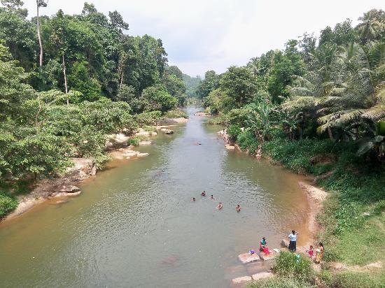 Tulip of Ceylon Nature Resort: Locals swimming in the river