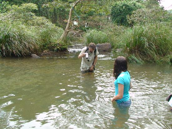 Tulip of Ceylon Nature Resort: Wading the river on the way to the Rock Temple!