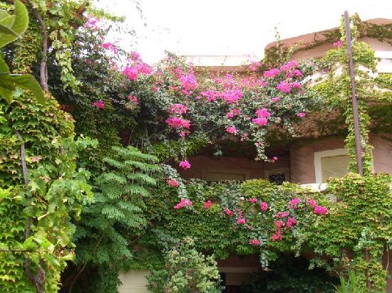 Costa Dorada : Garden