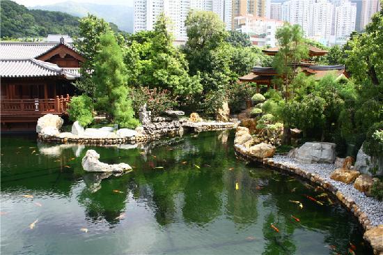 Hongkong, China: Nan Lian Gardens