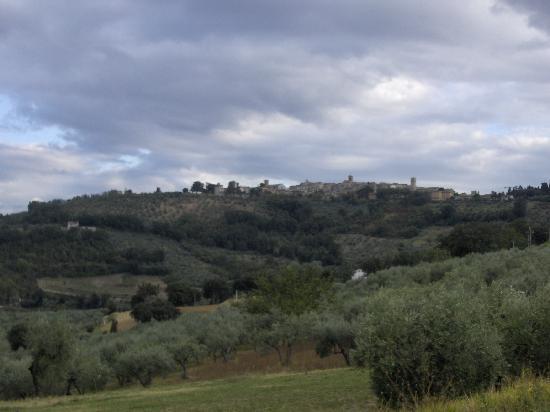 Villa Mustafa' : Vista da Montefalco