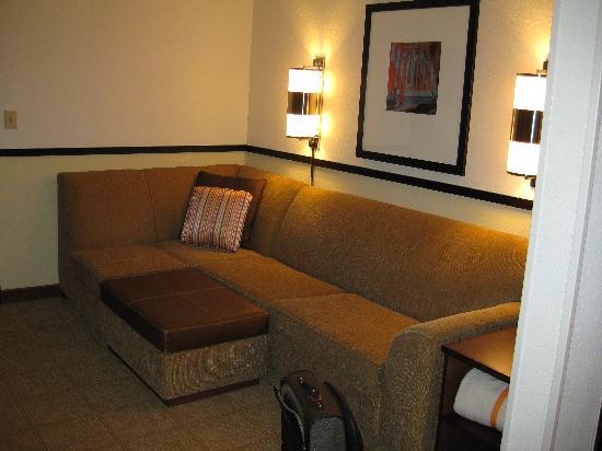Hyatt Place Atlanta Airport North: Living room/ sitting area