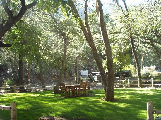 Ramsey Canyon Inn Bed and Breakfast: Picnic area  - very shady!