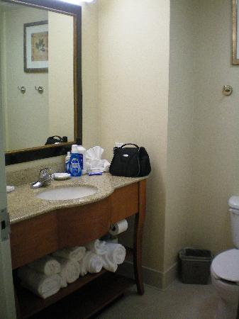 Hampton Inn Wichita Falls Sikes Senter Mall: Restroom