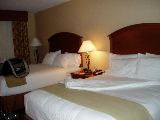 Holiday Inn Express Hotel & Suites Mitchell: Nice Double Queen Beds
