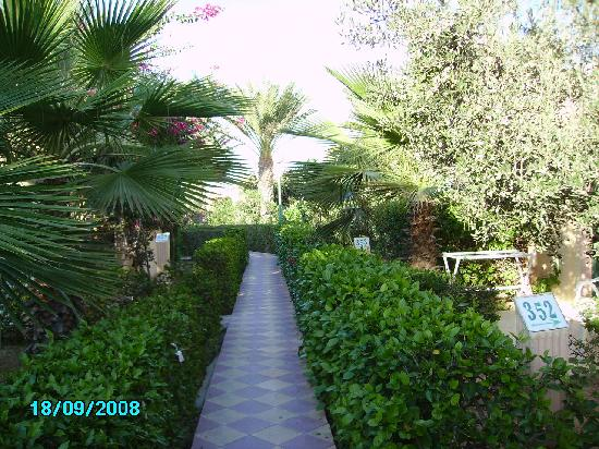 Club Oasis Marine: allée dans les jardins