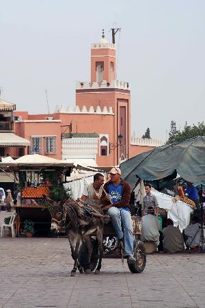 Moroccan House Hotel: Traditional transport, Jemma el Fna