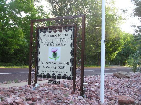 Desert Thistle: Sign