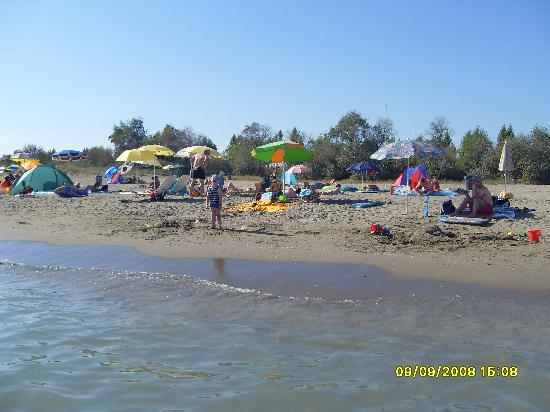 Camping Ca' Savio: The beach from the sea