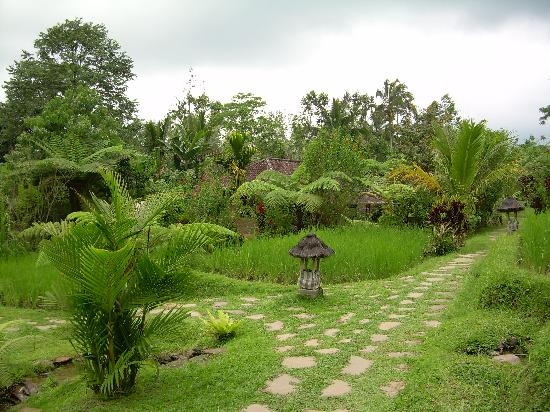 Prana Dewi Mountain Resort: On the grounds