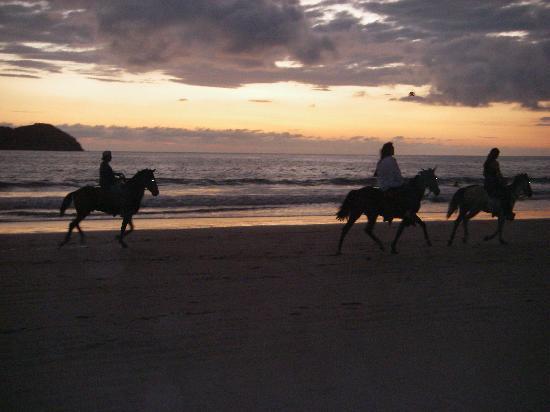 Arenas del Mar Beachfront and Rainforest Resort, Manuel Antonio, Costa Rica : Sunset Horseback riding on the beach i