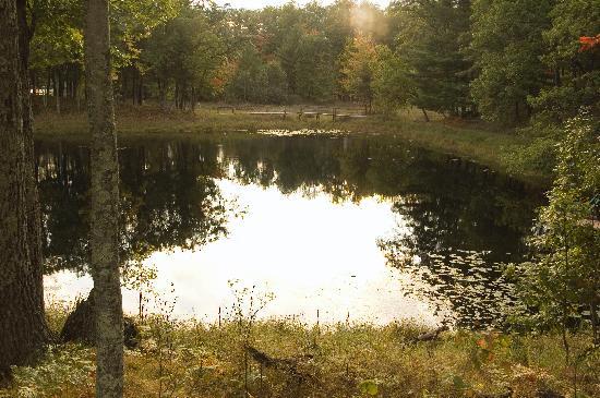 Canoe Bay: Pond