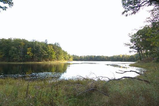 Canoe Bay: Pond III