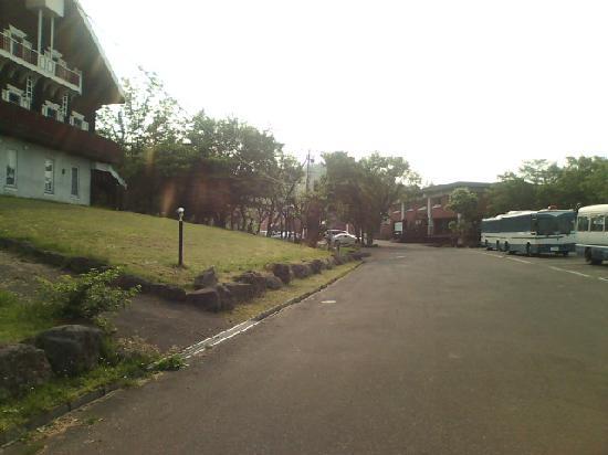 Iwanai Japan  city pictures gallery : 前菜 Bild von Iwanai Kogen Hotel, Iwanai cho TripAdvisor