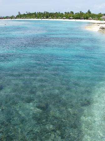 Cinnamon Dhonveli Maldives : vue sur la limpidité du lagon !