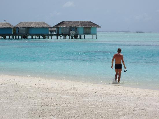 سينامون دونفيلي جزر المالديف: vue de la plage !