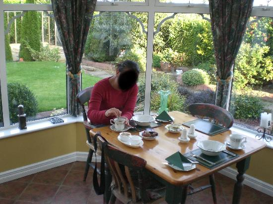Hillcrest View Bed and Breakfast: Petit dejeuner...