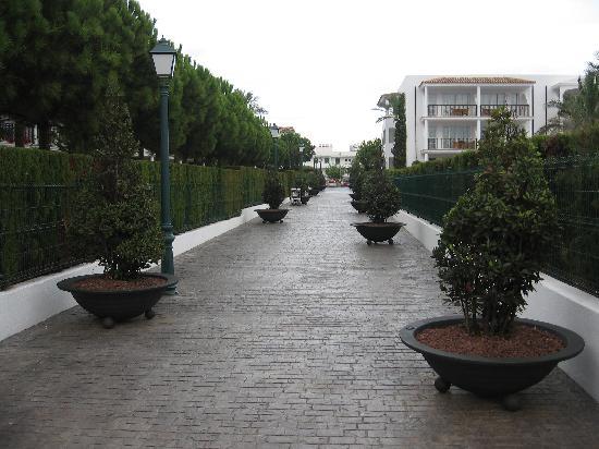 Inturotel Sa Marina: Walkway to the hotel