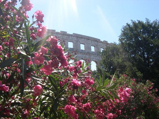 House Ivela: Pula Amphitheatre2