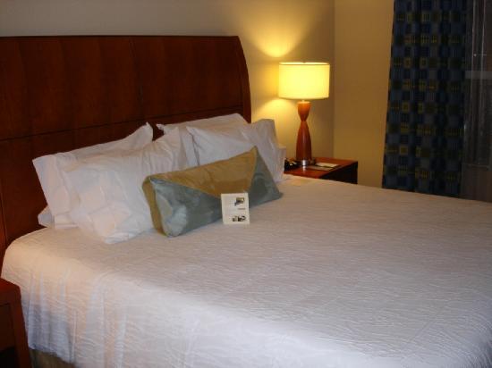 Hilton Garden Inn Tampa Airport Westshore: king bed