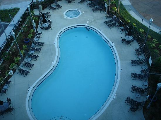 Hilton Garden Inn Tampa Airport Westshore: view to pool