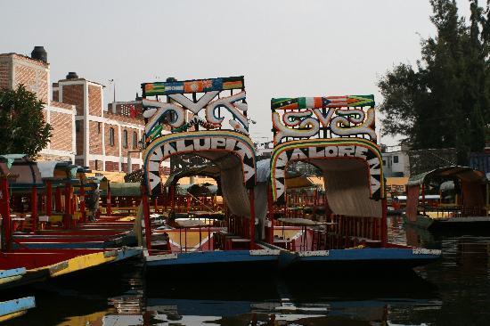 Floating Gardens Of Xochimilco Tour