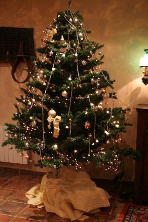 El Romeral Hotel: クリスマスツリー