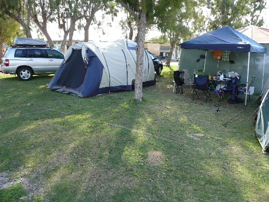 Jurien Bay Tourist Park: Campsite - grassed