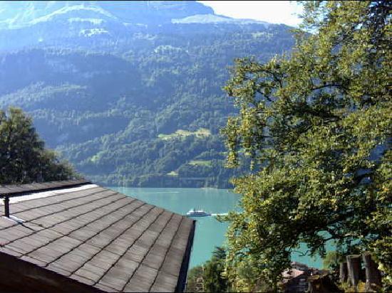 Hotel Lindenhof: Lake Brienz from Lindenhof room