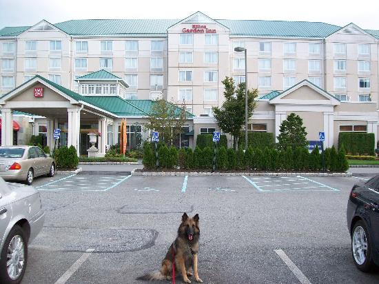 My Dog Vinnie In Front Of Hotel Picture Of Hilton Garden Inn New York Staten Island Staten
