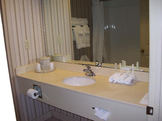 Holiday Inn Express Morehead City: Large sink area inside the bathroom