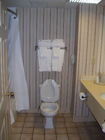 Holiday Inn Express Morehead City: Toilet with lots of towels