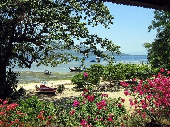 M.C. Dive Bunaken : View