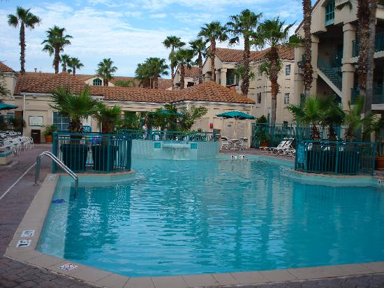 pool area picture of staybridge suites lake buena vista. Black Bedroom Furniture Sets. Home Design Ideas